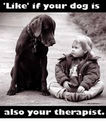 Therapist Meme - like if your dog is also your therapist meme on astrologymemes com