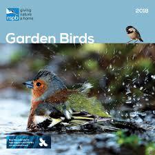 where can i buy a calendar rspb garden birds calendar 2018 calendar club uk