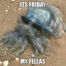 Friday Meme Pictures - the new friday meme memes