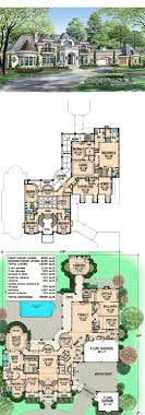 large estate house plans estate home plan with cabana room ideas for the house