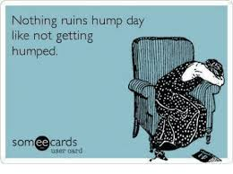 Hump Day Meme Dirty - hump day meme dirty nothing ruins hump day like not getting humped