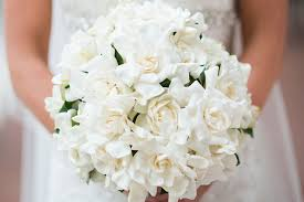 gardenia bouquet floral friday dainty delicate and deliciously scented gardenias