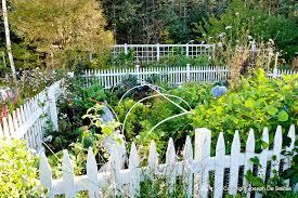 planting a vegetable garden in south carolina the garden