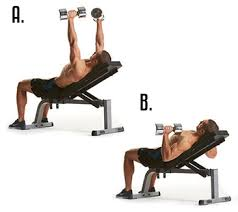 Incline Dumbell Bench Press Top 13 Chest Exercises Surge Fitness Jersey City