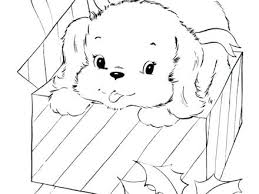 stunning marvelous puppy coloring pages printable print 5 free dog