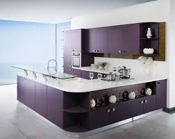 kitchen cabinet design ideas india 15 best italian kitchen designs with pictures in 2020