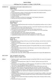 sap crm technical consultant resume crm consultant resume samples velvet jobs
