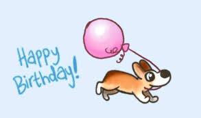 Corgi Birthday Meme - happy birthday gif find share on giphy