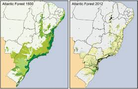 Cdc Malaria Map Malaria In Brazil What Happens Outside The Amazonian Endemic Region