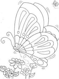 274 coloring butterflies images coloring