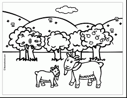printable coloring pages animal coloring pages bear with a hat on