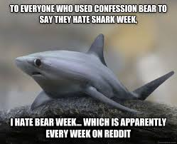 Meme Generator Confession Bear - confession bear meme template bear best of the funny meme