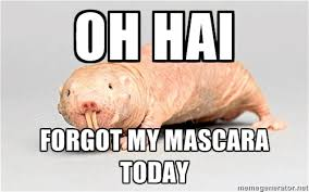 Mascara Meme - humpday confessions