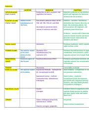 directional terms worksheet worksheet of directional terms used