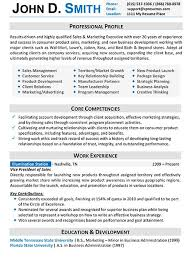 resume examples for professionals jospar