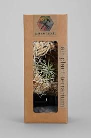 29 best diy terrarium kit images on pinterest terrarium kits