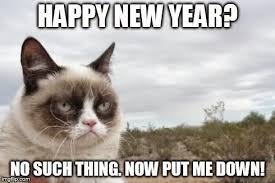 Happy New Year Cat Meme - speak of the devil ringing in a new year with her grumpiness
