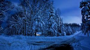 winter nature forest snow time trees winter snowy woods house