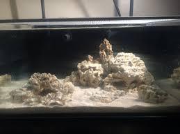Floating Aquascape Reef2reef Saltwater And Reef Aquarium Forum - im 25 lagoon build reef2reef saltwater and reef aquarium forum