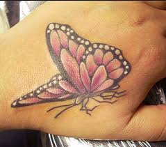 we here collect the most beautiful butterfly for