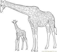 Giraffe Coloring Pages Giraffe With Baby Coloring Page Free Giraffe Coloring Pages by Giraffe Coloring Pages