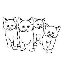 kitty cat kids drawing cute kitty cats coloring