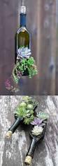 creative indoor and outdoor succulent garden ideas wine bottle