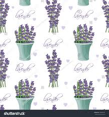 seamless pattern lavender flowers provence style stock vector