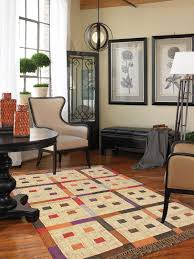 4x6 Shag Rug Rugs Cozy Decorative 4x6 Rugs For Interesting Interior Floor