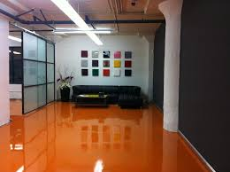 paw floor amazing kennel paint