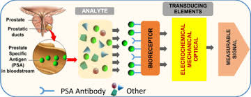 psa si e social a novel classification of specific antigen psa biosensors