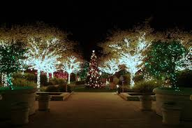 gardens of holiday lights garden club