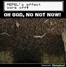Zubat Meme - zubat dank meme pokemoncirclejerk