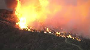 Wildfire Definition by Marek Fire Burns 50 Acres In Angeles National Forest Above Lake