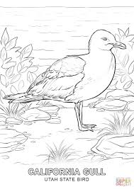tweety bird coloring pages utah state bird coloring page free printable coloring pages