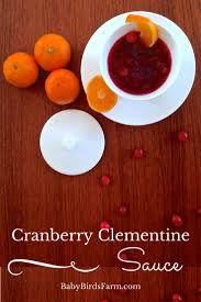 easy cranberry sauce recipes thanksgiving 25 best ideas about easy cranberry sauce on pinterest cranberry