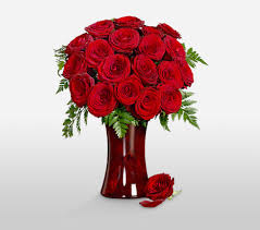 Long Stem Roses Romeo And Juliet 18 Red Long Stem Roses In A Vase To United