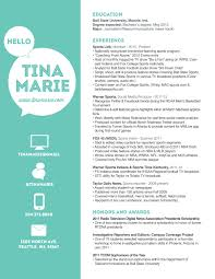 Great Graphic Design Resume Examples Dazzling Design Inspiration Web Design Resume 13 Web Designer Cv