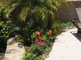 Pool Landscaping Ideas by Seeking Pool Landscaping Ideas In Texas Pool Has Direct Sun