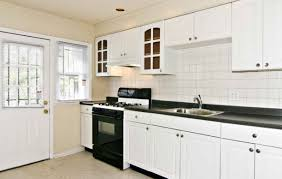 cabinet amazing replacement kitchen cabinet doors white without
