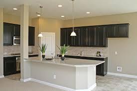 stark contrast kitchen between dark cabinets and light granite