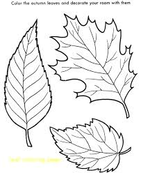 coloring pages of leaf shapes leaf coloring pages for preschool yuga me