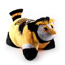 kennesaw state owls mascot scrappy the owl kennesaw state