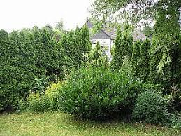 garten und landschaftsbau koblenz garten landschaftsbau in landkreis mayen koblenz