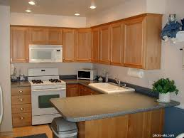 Apartment Kitchen Storage Ideas by Kitchen Designs Modular Kitchen Design For Small Area In India