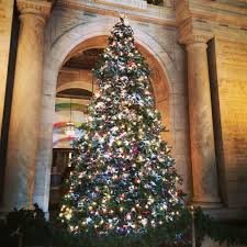 trees of new york christmas holiday 2015 oh the places we see