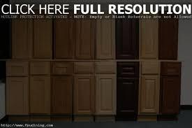 Kitchen Cabinets Door Replacement Fronts Wonderful Kitchen Cabinet Door Designs And Replacement Kitchen