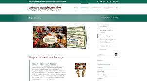 website portfolio our town america soul web design software