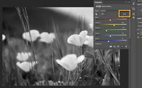 combine black and white with color in a photo adobe photoshop cc