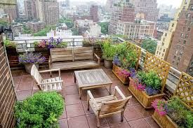 Roof Trellis Small Terrace Garden On Roof Top With Amazing City Views Completed